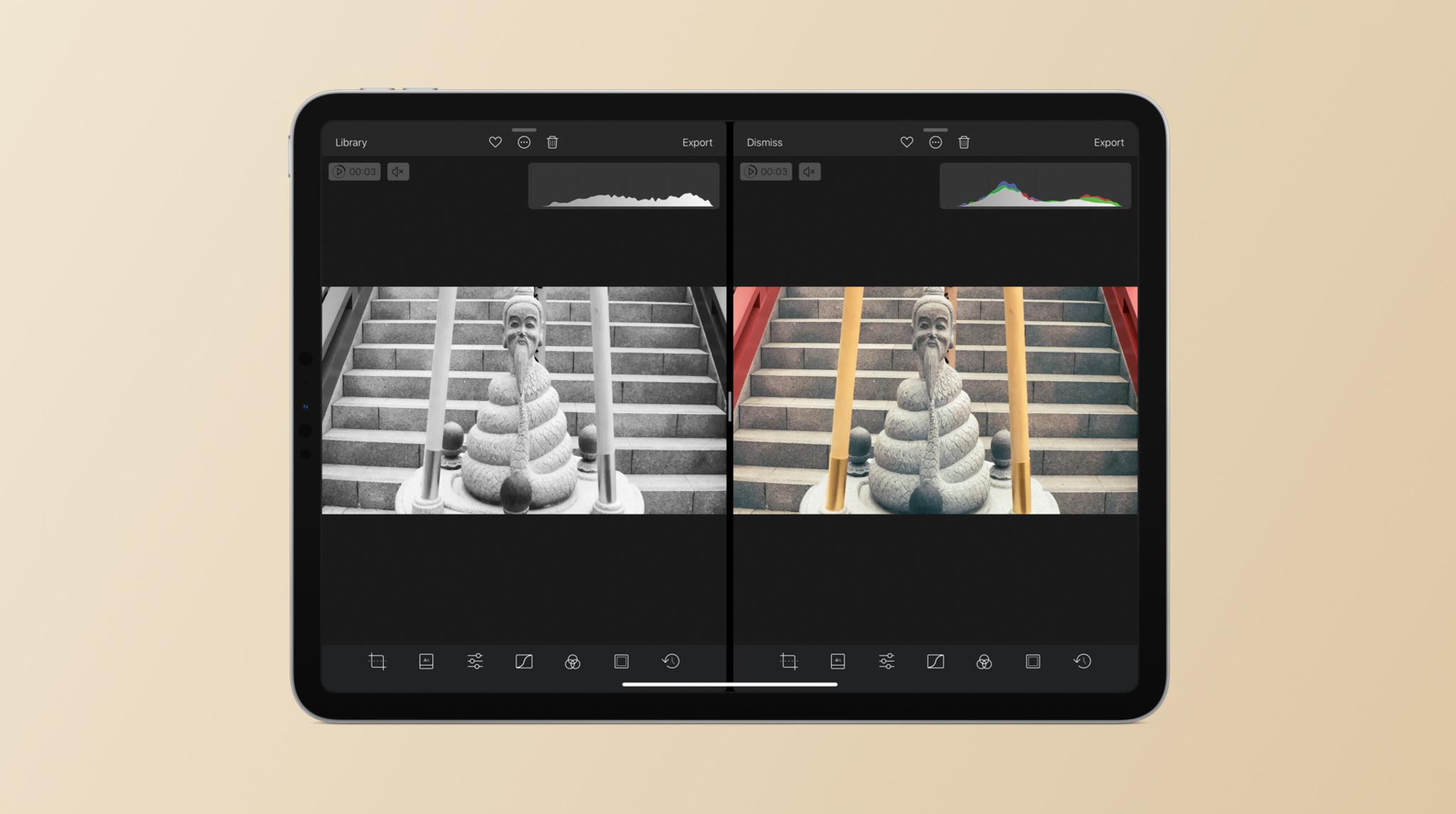 Darkroom on iPad Pro