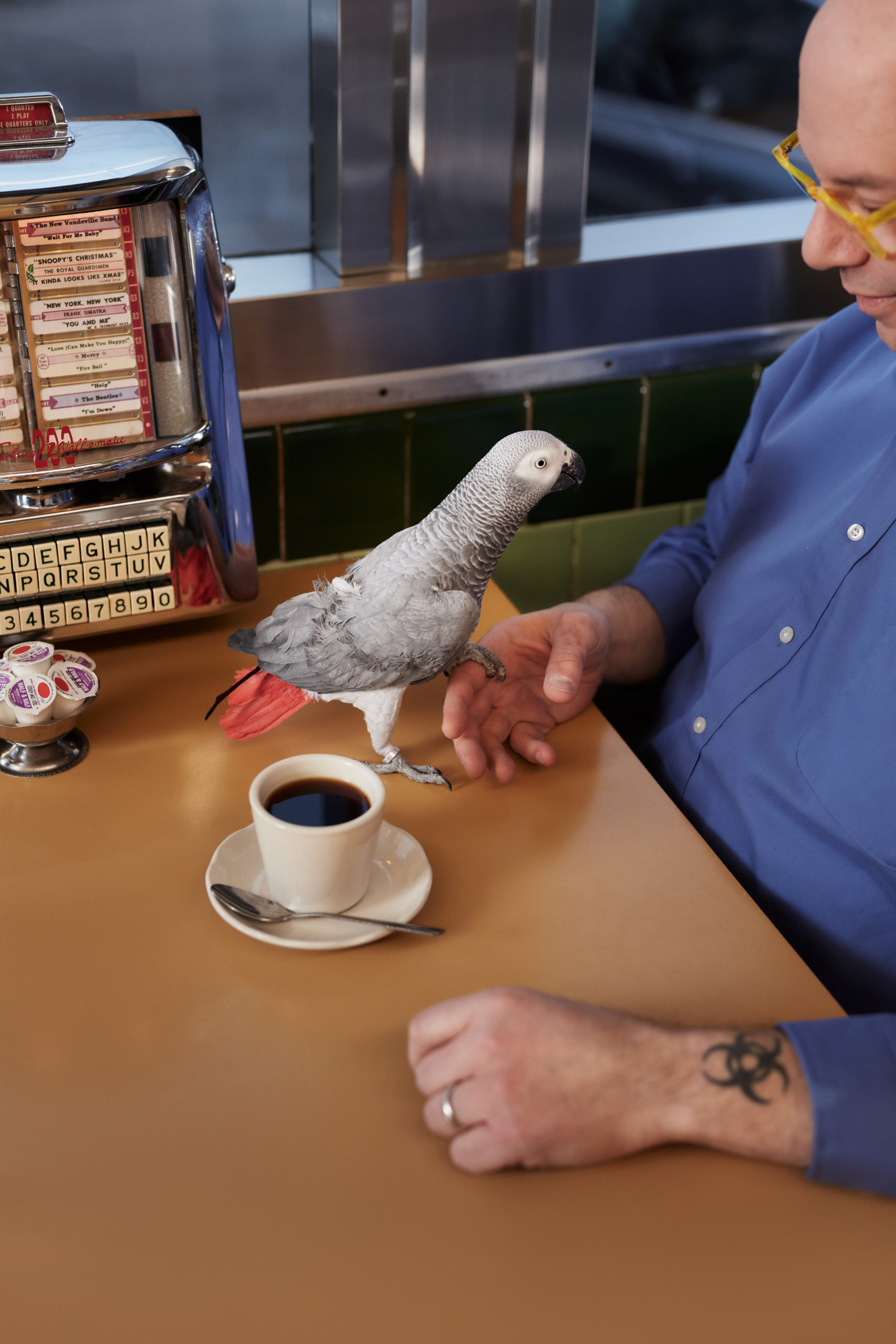 One of Siegel's parrots perches on his finger at the table of a local diner with a tabletop jukebox in the background.