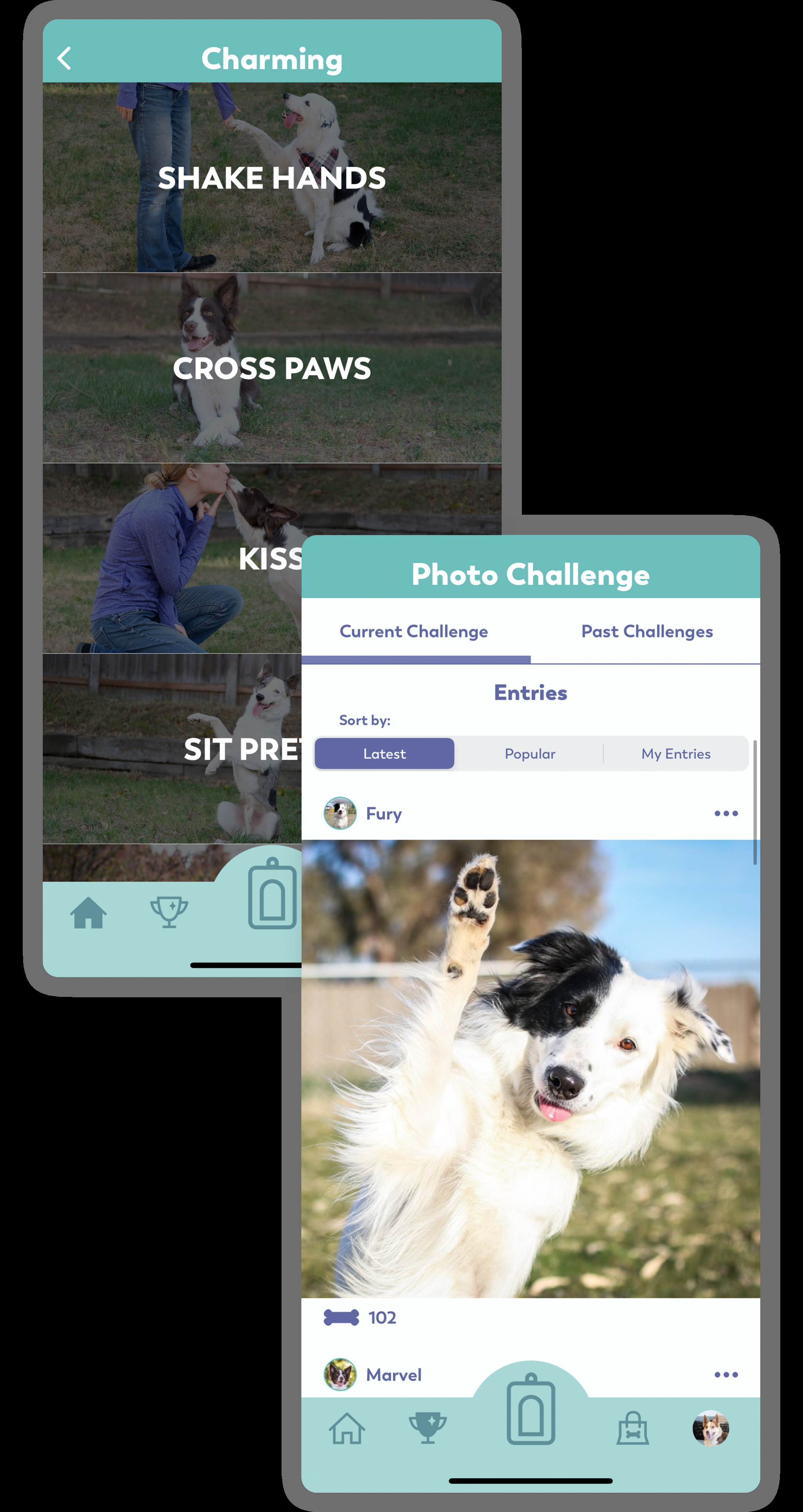 Puppr can help teach your pet to shake hands, cross paws, and maybe even say hi.