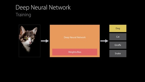 Neural Networks and Accelerate