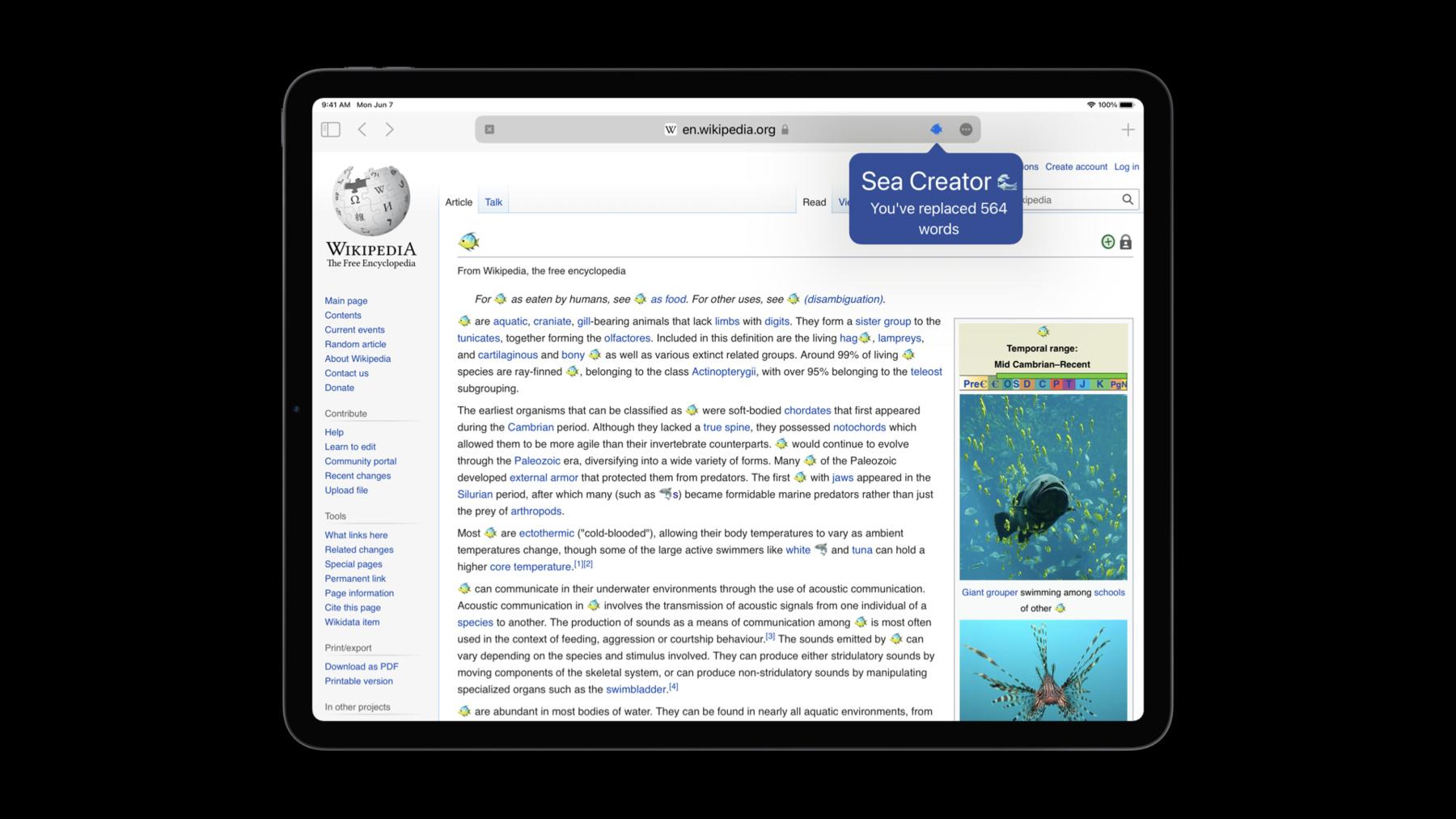 iPad showing a Safari Web Extension on iOS