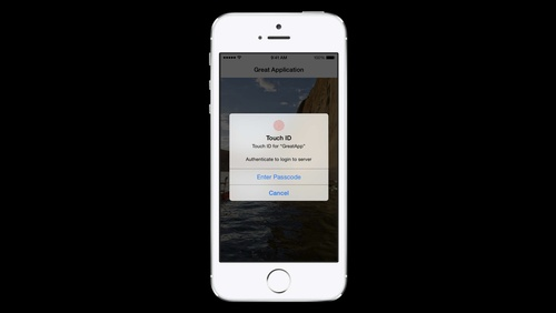 Keychain and Authentication with Touch ID