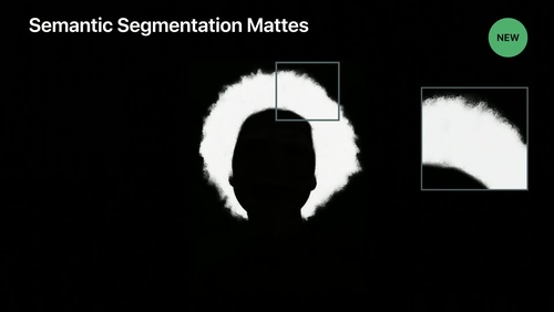 Introducing Photo Segmentation Mattes
